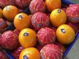 Mandarines Morket, фото 3